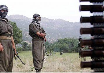 حزب-الحياة-الكردي-356x250.jpg